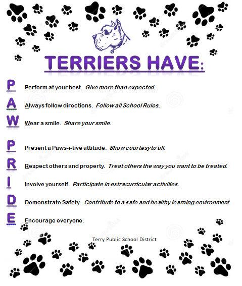 Terriers Have Paw Pride